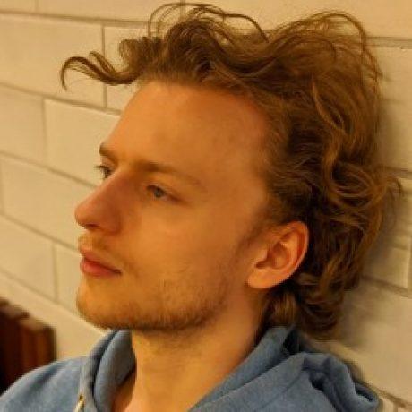 Profile picture of Lars de Wilde